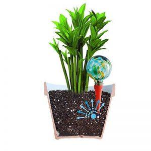 2Mini Plantpal décoratifs en verre d'arrosage globes, Plante d'arrosage Pointes, Aqua Pointes, système d'irrigation d'arrosage automatique de plante, vacances qui fonctionne vraiment. Idéal pour plantes d'intérieur. Utilisez en p image 0 produit
