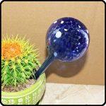 3 boules d'arrosage autonomes pour plantesAsentechUK® - En verre - Goutte à goutte (couleur aléatoire) de la marque AsentechUK® image 3 produit