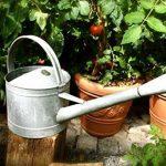 antikas–Arrosoir en zinc Arrosoir en zinc pour le jardin, fleurs, Théière de fleurs Gießer de la marque Antikas image 3 produit