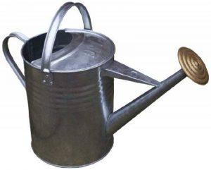 Apollo Arrosoir traditionnel en acier galvanisé 9 l de la marque Apollo Gardening Ltd image 0 produit