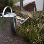 Apollo Arrosoir traditionnel en acier galvanisé 9 l de la marque Apollo Gardening Ltd image 1 produit