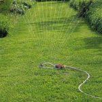 arrosage de pelouse TOP 0 image 3 produit