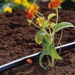 arrosage gardena goutte à goutte TOP 0 image 1 produit