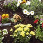 arrosage gardena goutte à goutte TOP 4 image 2 produit