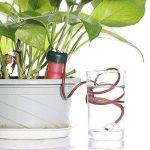 arrosage plante automatique TOP 9 image 3 produit