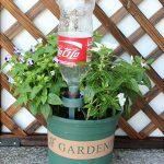 arrosage plante bouteille TOP 2 image 3 produit