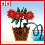 arrosage plantes bouteille plastique TOP 0 image 4 produit