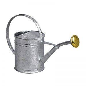 arrosoir acier galvanisé TOP 0 image 0 produit