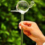 Arrosoir Automatique Forme Escargot en Verre Dispositif d'Arrosage Pour Fleurs Jardin de la marque MagiDeal image 2 produit