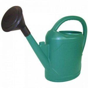 Arrosoir complet Ovale 10L Vert - arrosage des plantes en pots de la marque CIS PRODUCTS image 0 produit