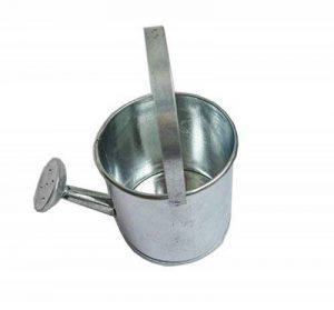 arrosoir en metal TOP 5 image 0 produit