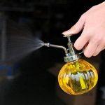 arrosoir en verre TOP 4 image 2 produit