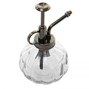 arrosoir en verre TOP 7 image 0 produit