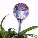 arrosoir en verre TOP 8 image 2 produit