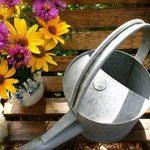 arrosoir en zinc TOP 10 image 2 produit