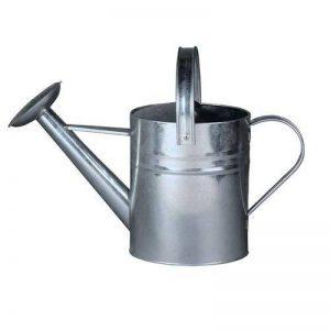 arrosoir en zinc TOP 8 image 0 produit