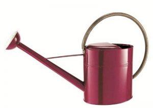 arrosoir rouge TOP 6 image 0 produit
