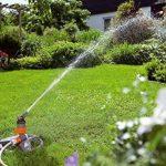asperseur pelouse TOP 4 image 1 produit