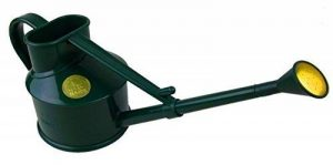 Bosmere Arrosoir en plastique pour intérieur V127DB 0.7L Green de la marque Bosmere image 0 produit