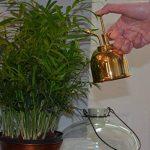 Bosmere Brumisateur pour plantes Haws - 283,5g 300ml cuivré de la marque Bosmere image 3 produit