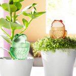 boule pour arroser plantes TOP 0 image 1 produit