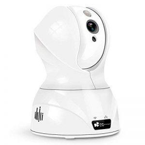 Caméra IP sans fil, EC Technology HD 720p camera wifi de surveillance avec vision de nuit pour bébé, camera surveillance autonome, audio double sens, appli iOS et Android pour camera interieur visionnage à distance,Blanc de la marque EC-TECHNOLOGY image 0 produit