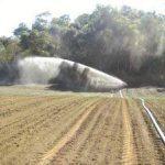 canon à eau pour arrosage TOP 3 image 3 produit