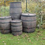 citerne vin tonneau récupérateur d'eau mémoire Fût de Chêne cuve à eau en plastique 500liter de la marque HeRo24 image 1 produit