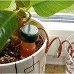 CON:P B45560 Système d'Arrosage de Vacances pour Plantes Lot de 4 de la marque CON:P image 3 produit