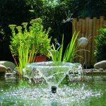 crépine pompe à eau TOP 2 image 3 produit
