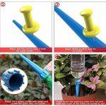 DCZTELG Plante d'arrosage Spike automatique Système de jardin Intérieur ou extérieur pour plantes d'irrigation goutte Système Care vos Fleurs 8-PACK de la marque DCZTELG image 4 produit