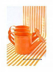 Divers 1 arrosoir Orange de la marque Divers image 0 produit