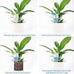 DOCA Boule d'arrosage Water Réserve D'eau Distributeur en Plastique et Ton Cône, 29cm de Haut, 0,6l Vol. Lot DE 2 de la marque DOCA image 2 produit
