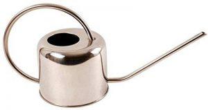 Esschert Arrosoir d'intérieur 1 litre de la marque esschert image 0 produit