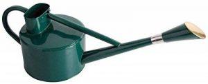 Esschert Design TG171 Arrosoir métallique Vert 5 l de la marque esschert image 0 produit