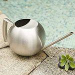 Fdit Arrosoir Pot Arrosage de capacité élevée en Acier inox Design Demi-ouvert pour Plantes Patio jardins bureau intérieur en plein air 1L de la marque Fdit image 3 produit