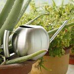 Fdit Arrosoir Pot Arrosage de capacité élevée en Acier inox Design Demi-ouvert pour Plantes Patio jardins bureau intérieur en plein air 1L de la marque Fdit image 6 produit