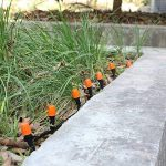 FIXKIT 40M Kit Micro Irrigation Goutte à Goutte Irrigation de Jardin Micro-Goutte Kit Automatique d'Arrosage de Tuyau DIY Système d'Arrosage Version Améliorée pour Jardin Serre Potager Pelouse de la marque Fixkit image 5 produit