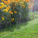 Gardena Arroseur souple arroseur à pulvérisation fine pour arrosage de zones étroites et allongées, longueur 15 m, prêt à être raccordé, raccourcissable ou extensible individuellement (1998-20) de la marque Gardena image 1 produit