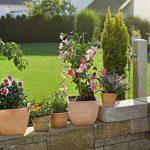 Gardena SDM Kit de démarrage Pots S, tropical de la marque Gardena image 1 produit