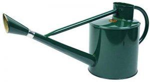 Gardman Arrosoir longue portée - Vert - 9l de la marque Gardman image 0 produit