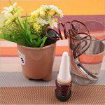 Goutte à Goutte Arroseur automatique/ Appareil d'arrosage Automatique des Plantes 8 Pack de la marque Twshiny image 3 produit