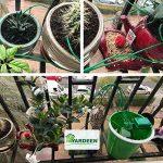 goutte à goutte plante intérieur TOP 1 image 1 produit