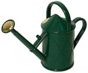 Haws V130gr Heritage Intérieur Plastique Arrosoir, 0.25-gallon/1-liter, Vert de la marque Bosmere image 0 produit