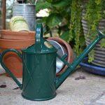 Haws V130gr Heritage Intérieur Plastique Arrosoir, 0.25-gallon/1-liter, Vert de la marque Bosmere image 2 produit