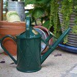 Haws V130gr Heritage Intérieur Plastique Arrosoir, 0.25-gallon/1-liter, Vert de la marque Bosmere image 3 produit