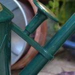 Haws V130gr Heritage Intérieur Plastique Arrosoir, 0.25-gallon/1-liter, Vert de la marque Bosmere image 4 produit