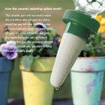 HIMM plante, vacances en céramique d'arrosage automatique pour plantes Pointes, système de fleur et Piquets d'arrosage de goutte automatique pour une utilisation intérieure et extérieure par 4 pièces de la marque HIMM image 4 produit