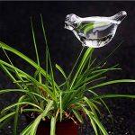 Hosaire 2X Créatif Boules d'irrigation en Forme d'Oiseaux Créatif Plante Arrosage Automatique-Transparent de la marque Hosaire image 1 produit