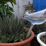 Hosaire 2X Créatif Boules d'irrigation en Forme d'Oiseaux Créatif Plante Arrosage Automatique-Transparent de la marque Hosaire image 3 produit